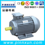 3 Phase High Efficiency Electric Motor 55kw