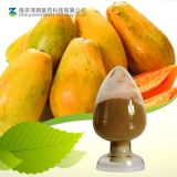 Factory Supply Papaya Extract Papain Powder Papain Enzyme