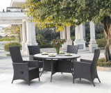 New Design Outdoor Dining Set/ Rattan Dining Set (BZ-D029)