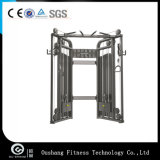 Commercial Gym Equipment Dual Adjustable Pulley/DAP Machine