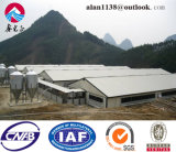 Steel Structure Pig House/Poultry House From China