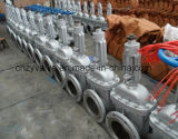 Dn50 to Dn1000 Pn20 Cast Steel Gate Valve