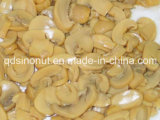 New Crop Canned Mushroom Pieces