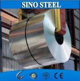 Electrolytic Tinplate for Metal Can