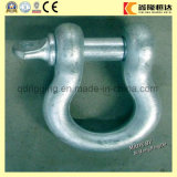 Screw Pin Bow/ Dee Shackle, Drop Forged with High Quality