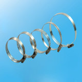 1/2′′american Type Stainless Steel Hose Clamp with Worm Drive