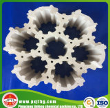 Light porcelain Packing Used in Chemical Purification Tower