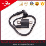 Cg125/150 Automobile Ignition Coil Racing Ignition Coil with High Quality