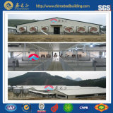 ISO Certificated Steel Structure Pig Farm (CH-51)