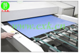 Wide Developing China CTP Plate