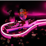 High Brightness DC24V Low Voltage SMD RGB LED Flex Neon Light