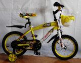 Competitive Price Beautiful Kids Bikes (FP-KDB113)