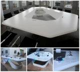 Special Design Meeting Desk for Boardroom