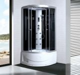 CE ISO9001 2008 RoHS Steam Shower Room (ADL-8804)
