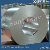 Galvanized Cold Rolled Steel Sheet Coil in Coil