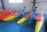 Best Seller Water Park Equipment Paddle Boats 2 Seater Bike/Water Bicycle for Sale