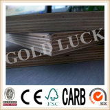 Qingdao Gold Luck Film Faced Bridge Plywood