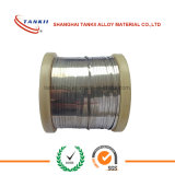 Constantan Eureca Wire / Flat Wire/Ribbon
