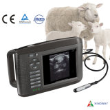 Portable Ultrasound Scanner Machine RW-802V-Vet (veterinary)