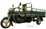 150cc Cargo Tricycle Popular for Africa Market (TR-20)
