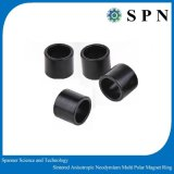 Permanent NdFeB Multipole Sintered Magnet Rings for Motor