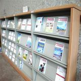 Library Magazine Shelves/Shelves to Display Books/Bookshelf/Bookcase/Book Shelf