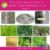 Good Quality Herbicide Bromacil (95%TC, 50%SC, 80%WP, 80%WDG)