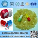 Gelatin for Medicine