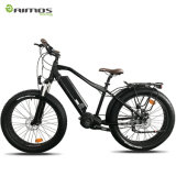 48V 1000W Bafang MID Drive Ultra System Color Display Electric Bike with Fat Tire