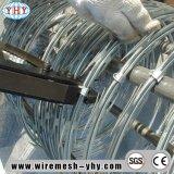 Galvanized Diamond Mesh Razor Barbed Wire Fence for Perimeter Security Fence