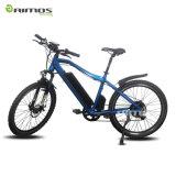 Changzhou Aimos AMS-Tde-011 26′′*1.95 Kenda Tire City E Bike