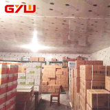 Most Popular Creative Nice Looking Cold Storage/Cold Room for Corn Seed