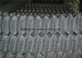 Hot-Dipped Galvanized Chain Link Wire Mesh Fencing/Diamond Wire Mesh