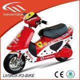 Gas Powered Cheap Pocket Bike