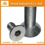 Ss DIN7991 Hex Socket Countersunk Head Screws