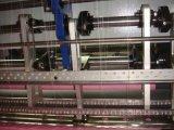 Computer Shuttle Multi-Needle Quilting Machine High Speed (YXS-64-2C)