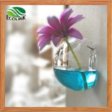 Glass Terrarium Ornament Hanging Wall Vase