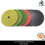 Xiamen Stone/Granite/Marble/Concrete Diamond Dry Wet Polishing Cleaning Pads