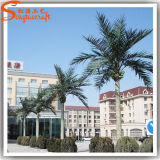 Cheap Coconut Trees Artificial Coconut Trees Outdoor Coconut Trees