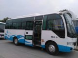 High Quality LHD Rhd Mini Bus with 20-25 Seats