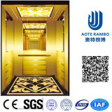 Residence Home Lift in Passenger Elevator with German Technology (RLS-255)