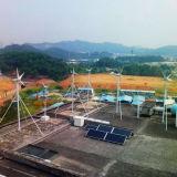 CE Approved 1200W Wind Turbine (SKY 1200W)
