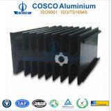 Customized Black Anodized Aluminum/Aluminium Radiator (REACH 155)