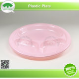 Plastic Plate with Color