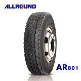 Double Star 315/80r22.5 Truck Tire, Truck Tyre, Car Tire, Trailer Tire
