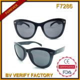 F7286 Black Sunglasses Cat Eye Lady Sunglass