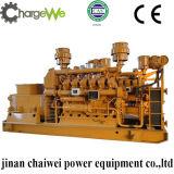 Natural Gas Generator Set Cw-1000