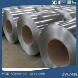 Aluminum Sheet/Plate Alloy Profile Coil From China