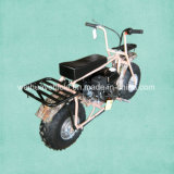 Popular Gas Powered Mini Bike or BMX Bicycle From China