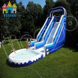 Exciting Inflatable Ball Jumping Water Slide Combo